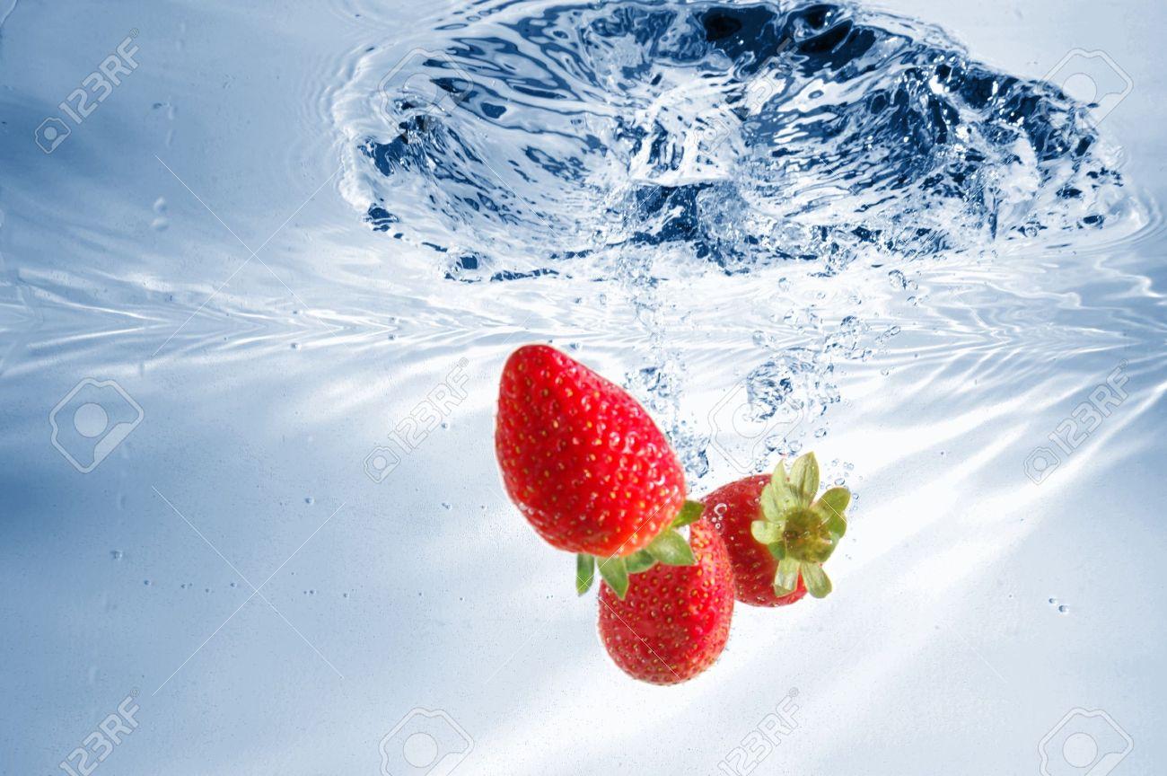 Tầm quan trọng của nước trong sinh vật sống